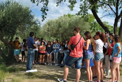 Campus d'estiu