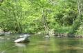 Una conca fluvial
