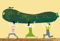 L'hort Ecosolidari de la UdG a la revista UdGent