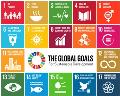 Curs en línia sobre els ODS
