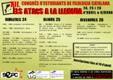 Cartell congrés Girona