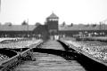 Dia Mundial de Commemoració en Memòria de les Víctimes de l'Holocaust
