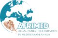 Logotip AFRIMED