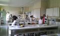 Pràctiques en microbiologia clínica